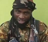 Shekau: Why we Killed 43 Borno Farmers