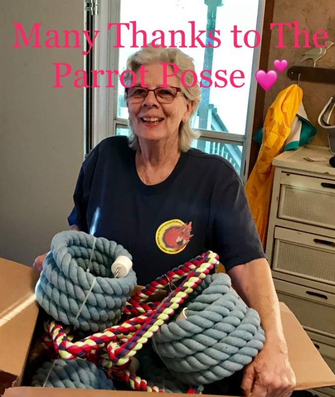 "A lady smiling and holding a large box filled with parrot rope perches with the caption, ""Many Thanks to the Parrot Posse"" across the top of the photo"