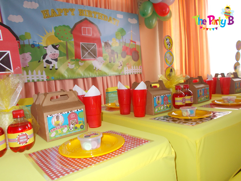 Birthday Party Decorations In Home