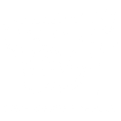 The Party Case