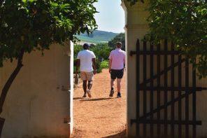 babylonstoren winery stellenbosch