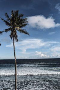 mirissa sri lanka coconut hill