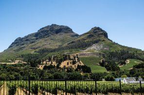 reveler tours south africa wine tours