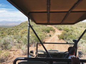oudtshoorn safaris
