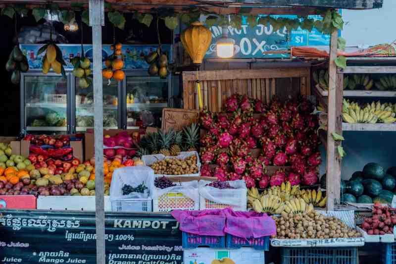 The Juice Box in Kampot, Cambodia