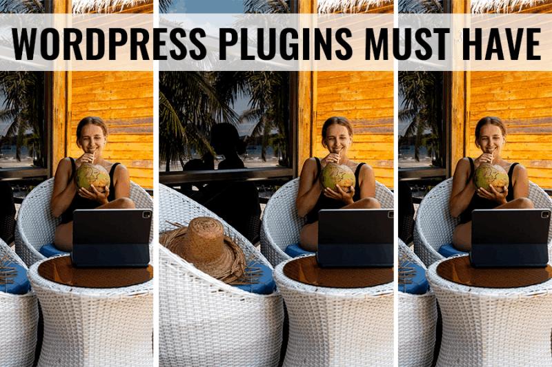 wordpress plugins must have