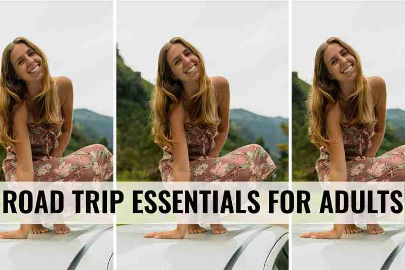 road trip essentials for adults