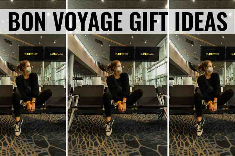 bon voyage gift ideas