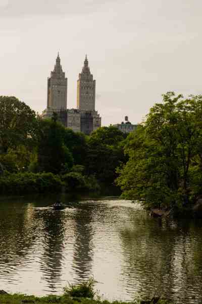 what to do in new york today