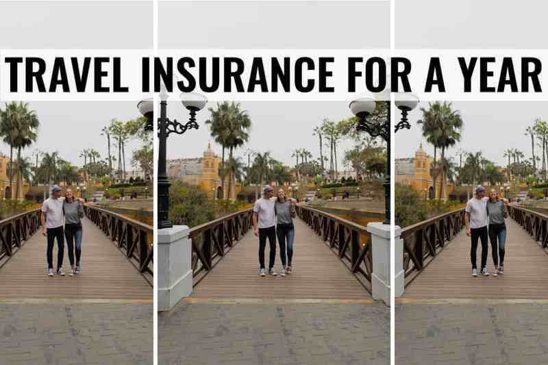 travel insurance for a year