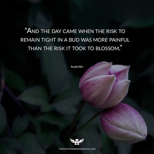 And the day came when the risk to remain tight in a bud was more painful than the risk it took to blossom Anaïs Nin