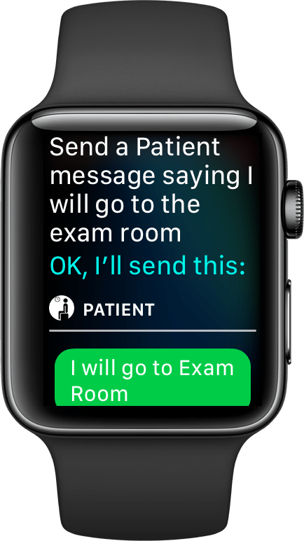 watch-siri-articulated-assignment-1-case