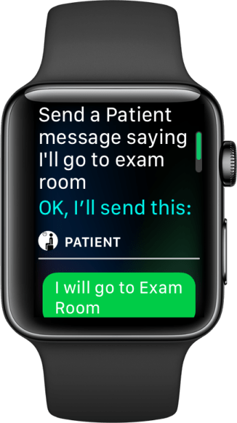 watch-siri-articulated-assignment-2-case