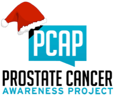 PCAP logo with Christmas hat