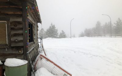 Peachland's outdoor rink won't open this winter