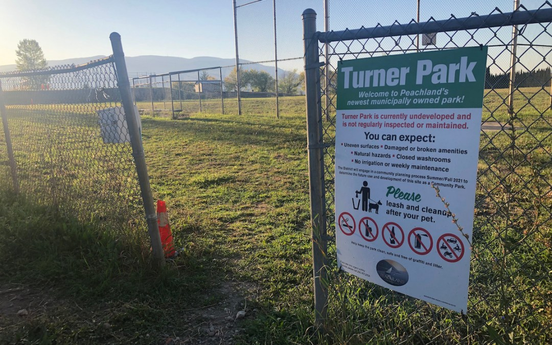 Divided on dogs & keeping Cousins as-is: What councillors are saying about Turner Park