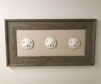 DIY Sand Dollar Wall Art