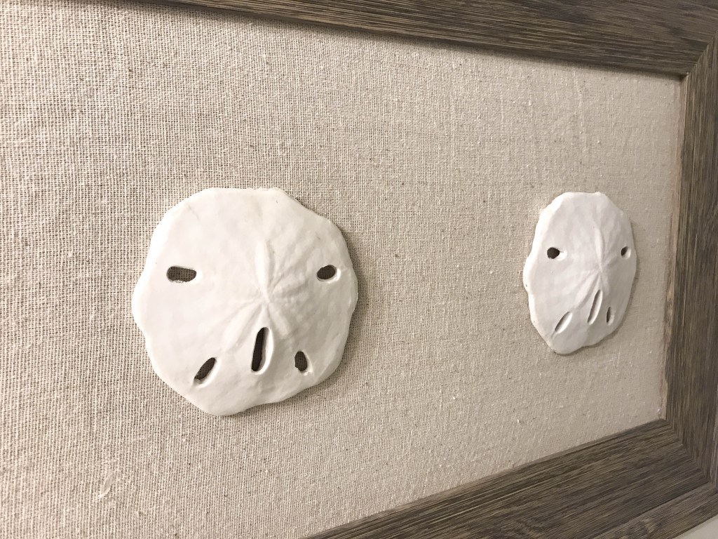 DIY Sand Dollar Art