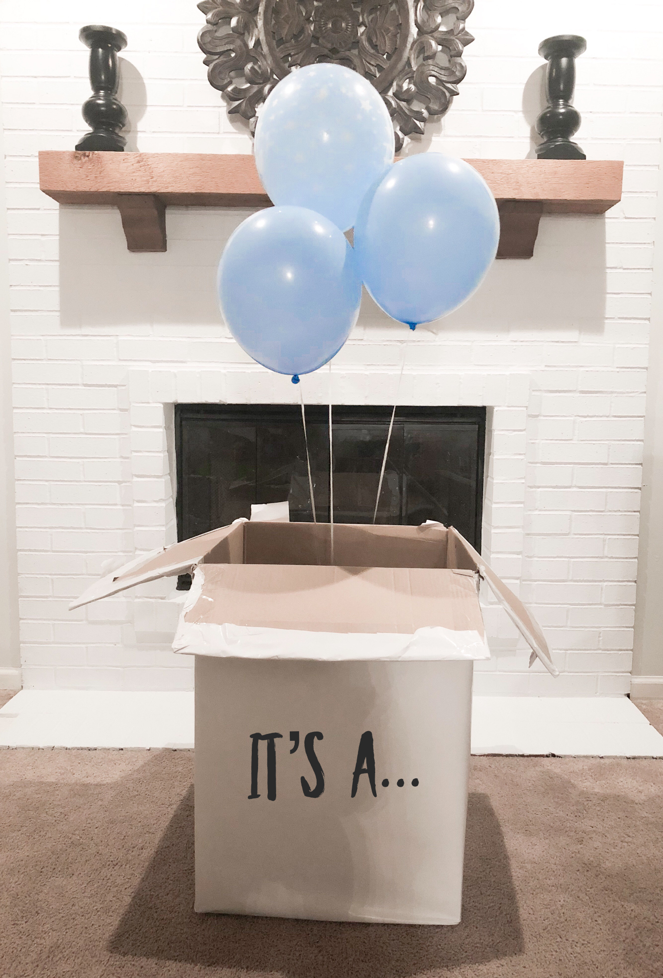 Gender Reveal, It's a... boy