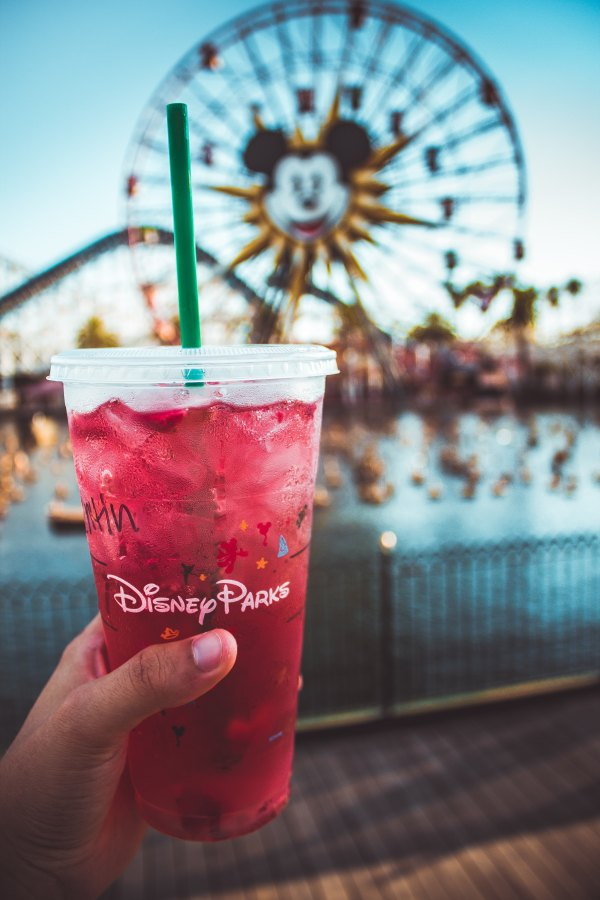How to Plan a Trip to Disney World on a Budget