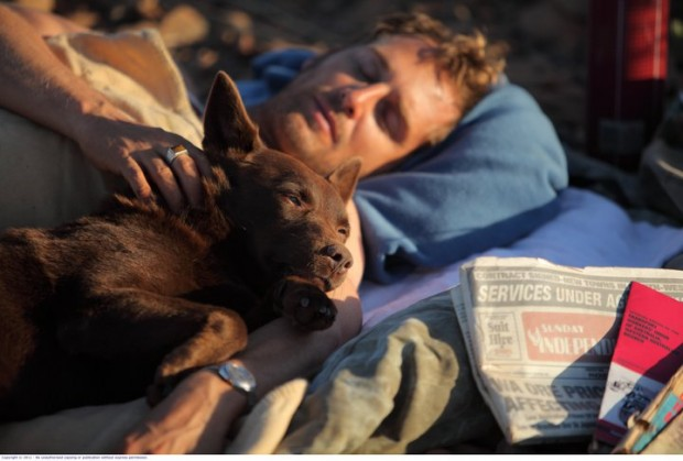 Not A Man's Best Friend But A Town, Read RED DOG DVD Review