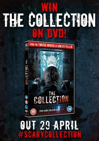the-collection-comp