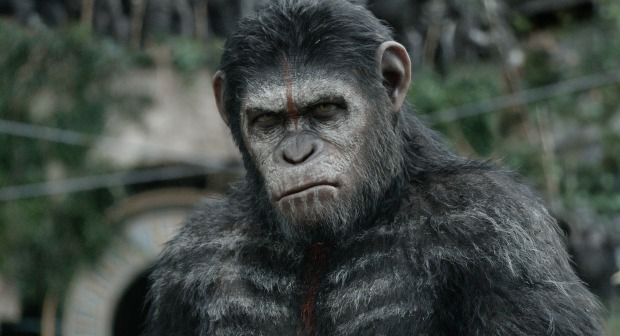 Film Review – Dawn of the Planet of the Apes 3D (2014)