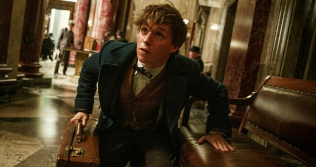 Watch Fantastic Beasts And Where To Find Them European Premiere