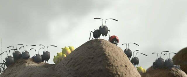Minuscule Ants