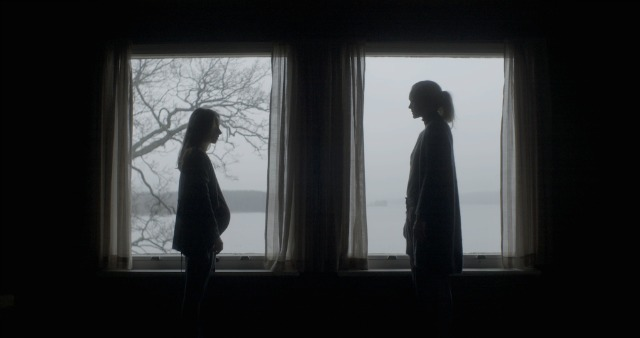 Win The Atmospheric Horror Shelley On DVD