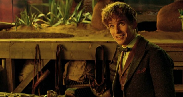 fantastic-beasts-and-where-to-find-them-redmayne
