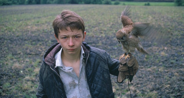 Win Ken Loach's Quintessential KES On Blu-ray