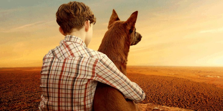 Win Red Dog: The Early Years On DVD