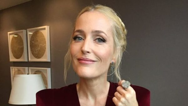 Gillian Anderson Offers 'Sex Lessons' For Netflix In Sex Education