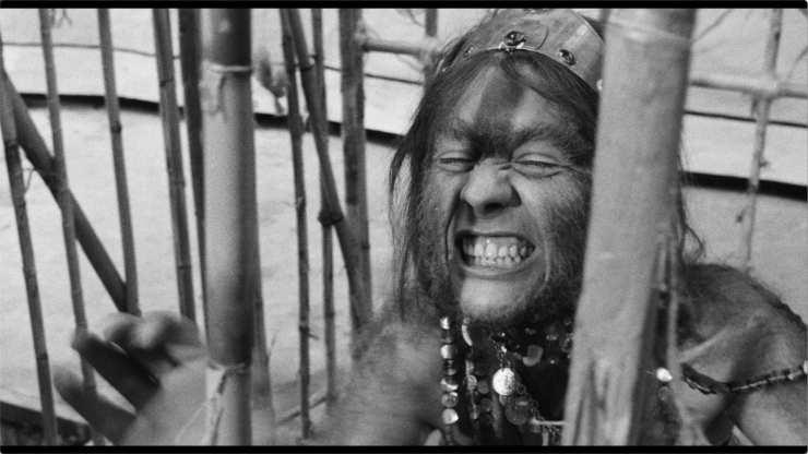 Marco Ferreri's The Ape Woman Getting A 4K Release