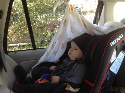 napping on the road to Moms & Pops'