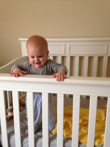 the crib became a chew toy...