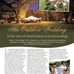 The Perfect Wedding Issue 6 page 20
