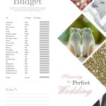 The Perfect Wedding 8 Contents page 55