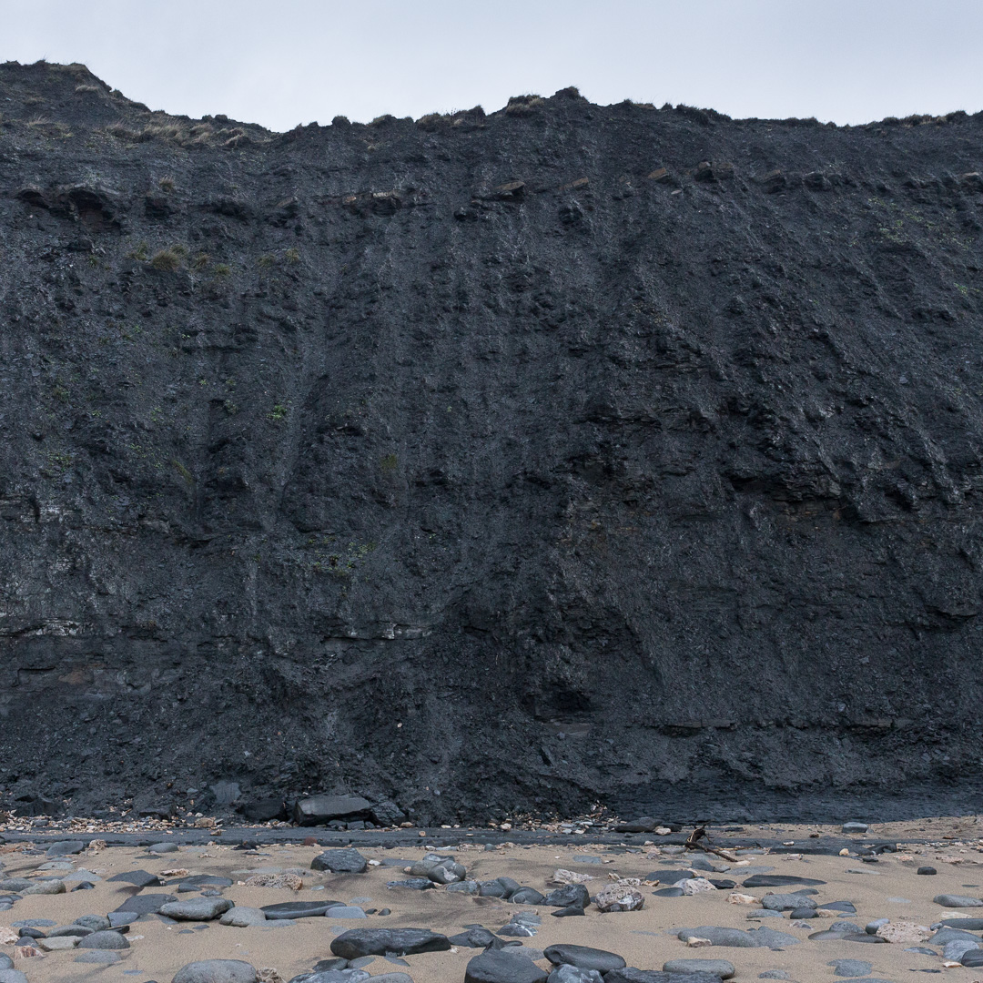 Base of Black Ven which has the largest mudslides in Europe and is rich in fossils, Dorset.
