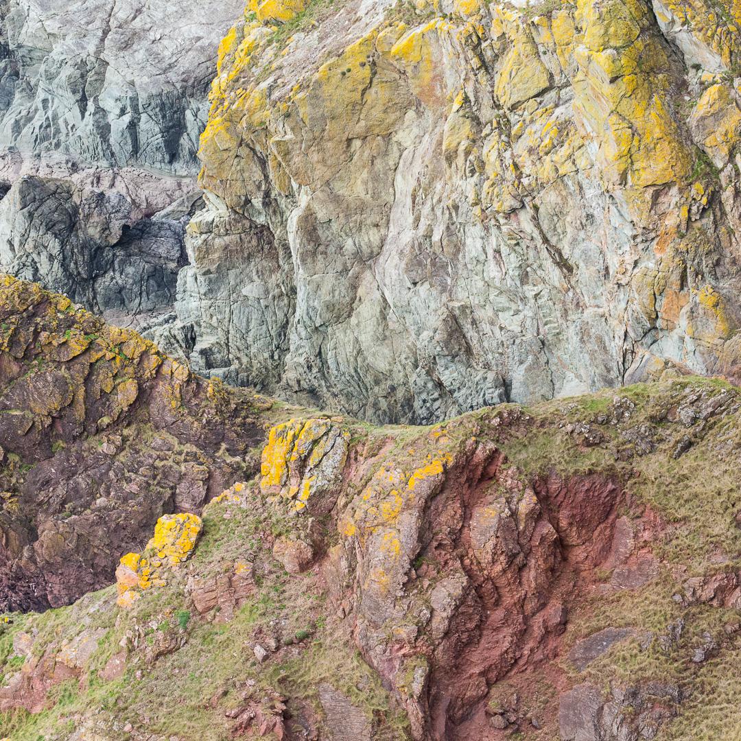 Rock palette, Bolt Tail, Devon.