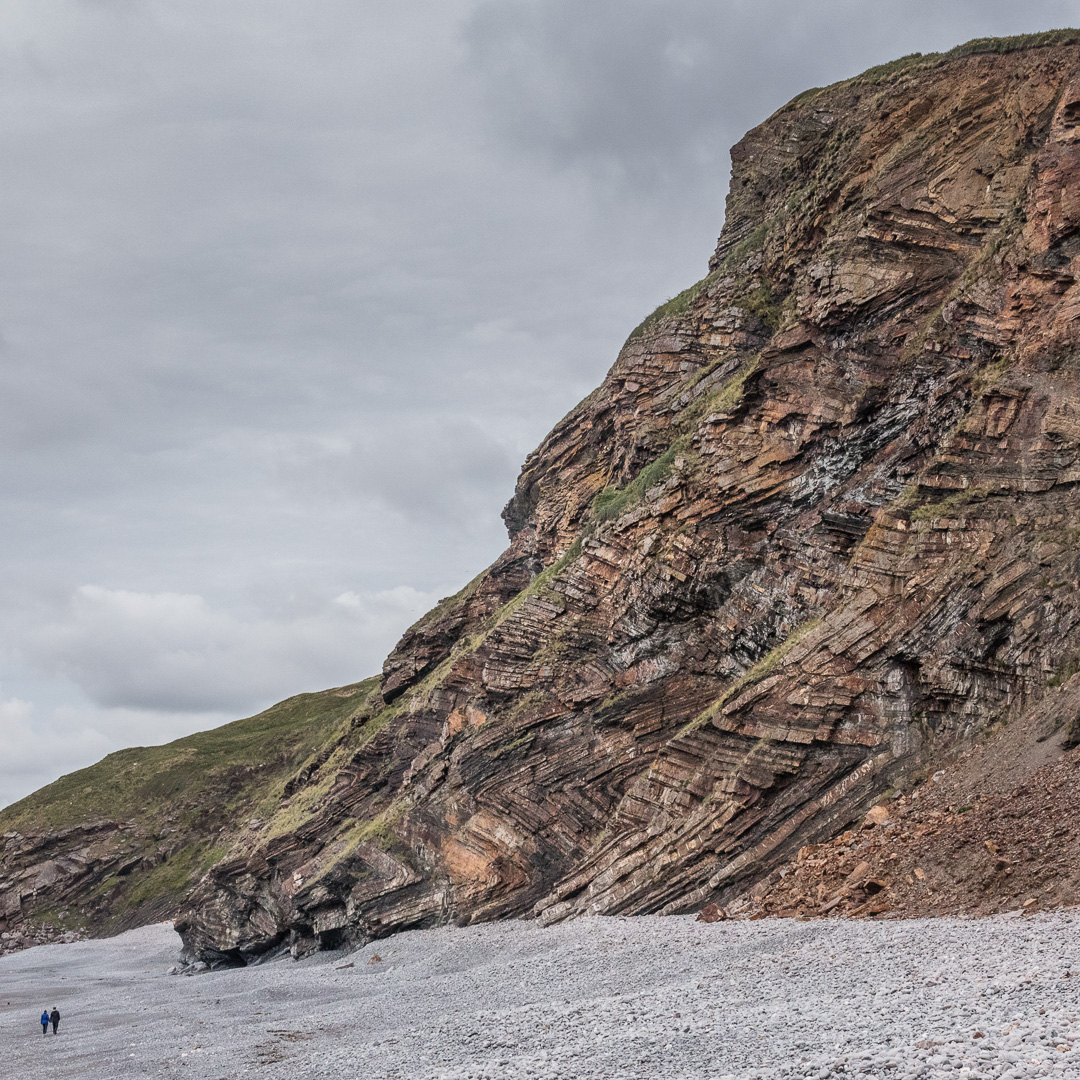 Chevron folding in geological strata at Millook Haven, Cornwall.