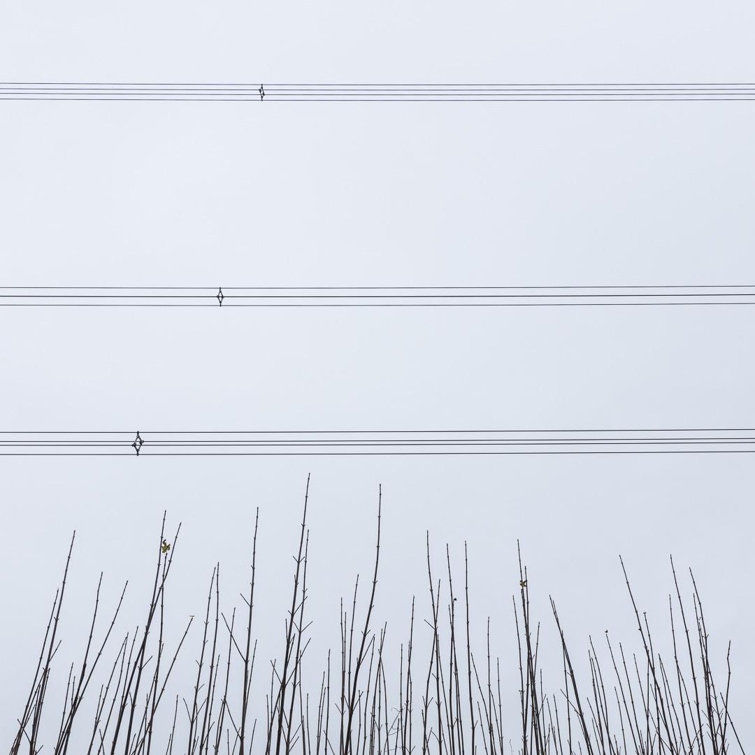 Overhead power lines, near Llangain, Gwent.