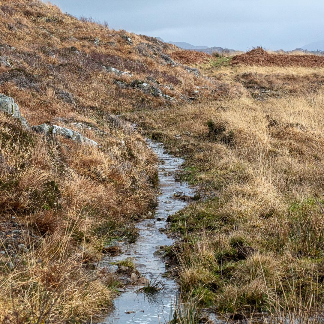 Path/stream from Arisaig, Lochaber, Scotland.