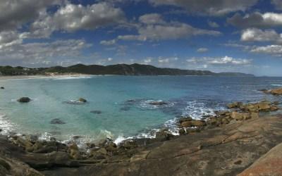 Workshops, beach walks and road trips