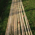 Preparing the Bamboo