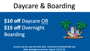 $10 - $15 off daycare-boarding