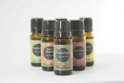 essential oils cat dog