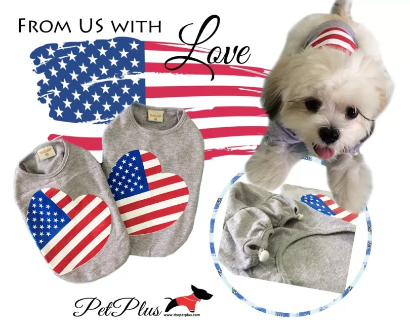 US flag with love