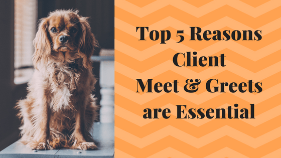 Top 5 Reasons The Pet Sitter's Meet & Greet is Essential